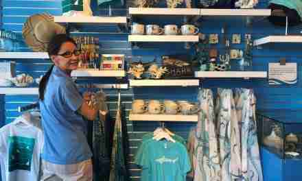 New in 19  This Year's Souvenir Sellers at Zoo and Aquarium Shops