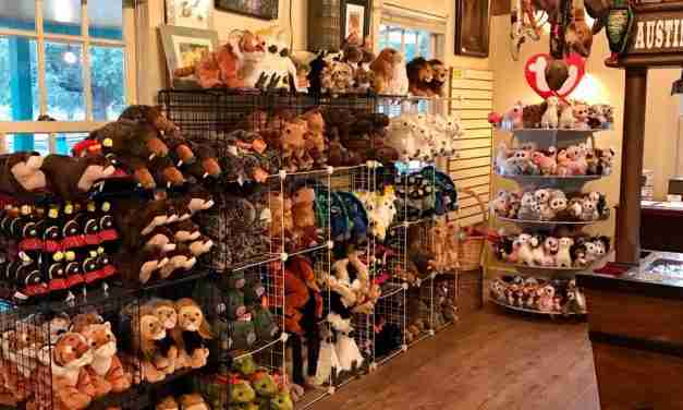 A Report on Merchandise and Operations at Zoos and  Animal Sanctuaries