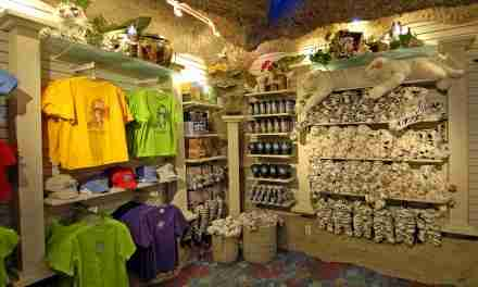 Gifts for a Perfect Souvenir Fit <br> Name-dropped and Custom Merchandise at  Zoos and Aquariums