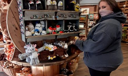 Sure-Selling Souvenirs <br> How Two Facilities are Faring  During the Pandemic