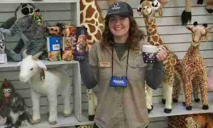 Where Souvenirs Sell <br> Name-Dropped and Custom  Products at Zoos