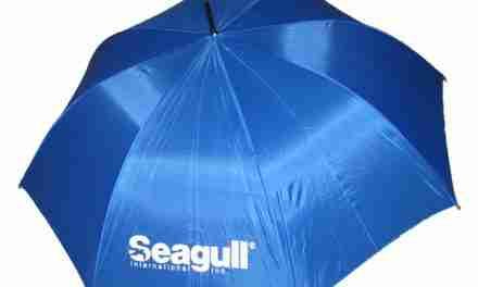 Seagull International, Inc.: Be Ready for Rain or Shine